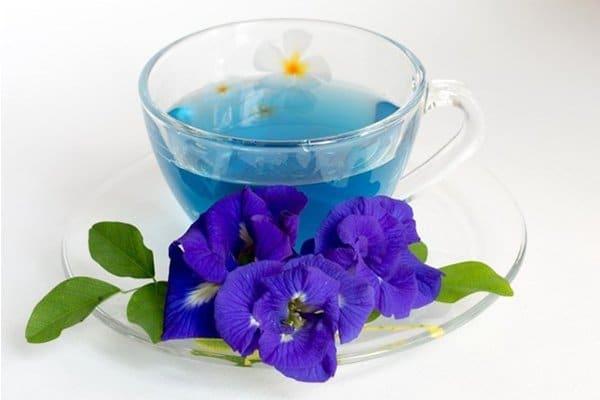 Пурпурный чай чанг шу полезные свойства применение