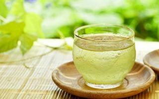 Полезные свойства чая кокейча