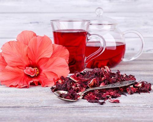 Полезные свойства чая каркаде и его противопоказания