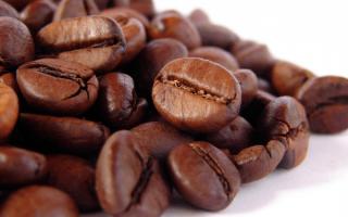 Что такое кофе робуста?