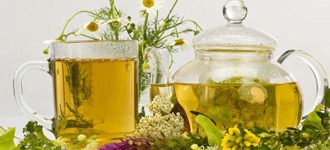 Польза и рецепты успокоительного чая