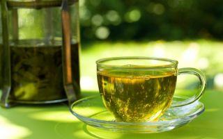 Зеленый чай: правила приготовления