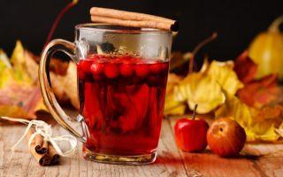 Рецепт заваривания чая с калиной: польза напитка, как пить от простуды?