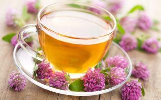 Как правильно заваривать чай из клевера