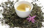 Как действует зеленый чай на печень человека