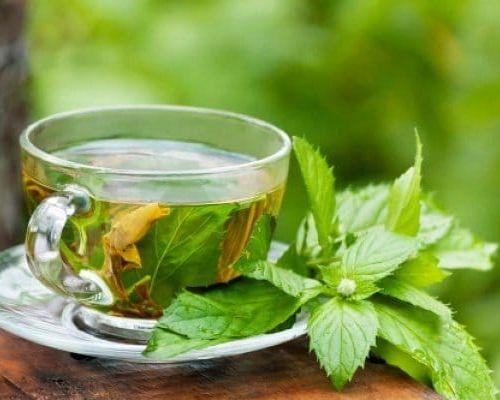 Рецепты чая из малиновых листьев: его полезные свойства