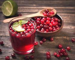 Польза чая с клюквой (рецепты)