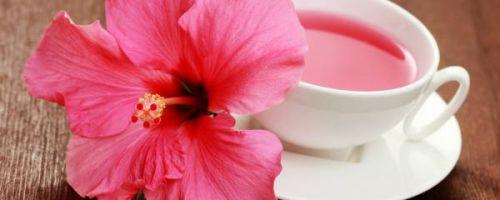 Чай каркаде и его свойства