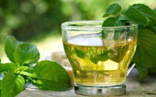 Рецепты и свойства чая с базиликом