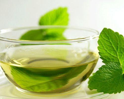 Польза зеленого чая с мелиссой
