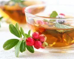 Полезные свойства и рецепты брусничного чая