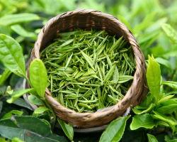 Полезные свойства зеленого чая с лимоном и советы для похудения