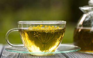 Укропный чай для детей и взрослых