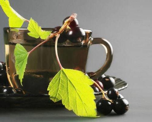 Чай из смородиновых листьев: польза и вред