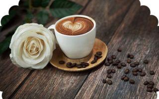Является ли кофе мочегонным средством?