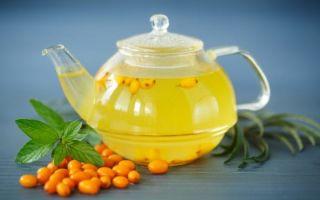 Полезные свойства и рецепты облепихового чая