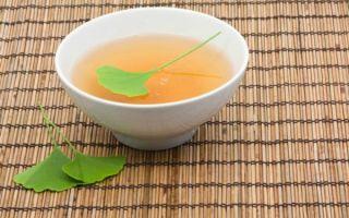 Полезные свойства чая гинкго билоба