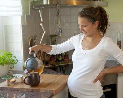 Можно ли при беременности пить иван-чай
