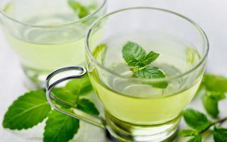 Польза зеленого чая с мятой