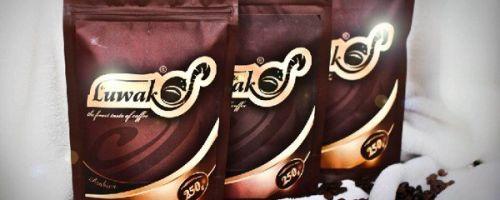 Лювак — описание самого дорогого элитного кофе в мире