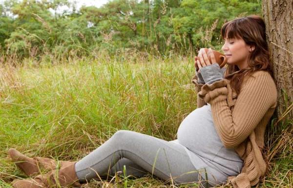 Зеленый чай полезен для беременных