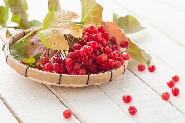 Польза ягод