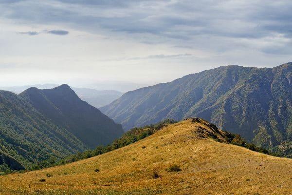 Балканы - Родина травяного напитка