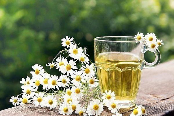 Чай ромашковый травяной