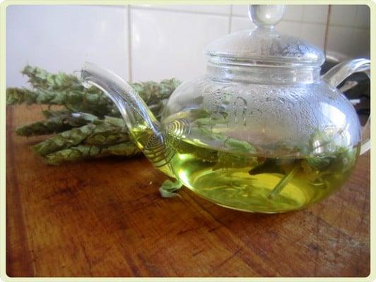 Противопоказания к применению мурсальского чая