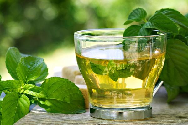 Полезные свойства зеленого чая с мятой