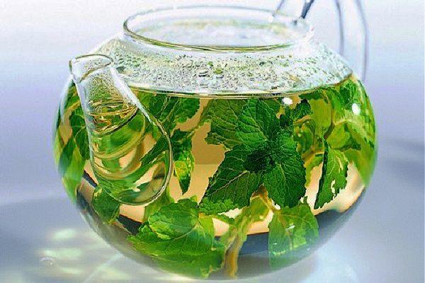 Зеленый чая с мятой для женщин и детей