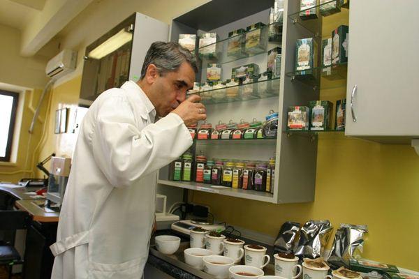 Дегустатор чая или титестер