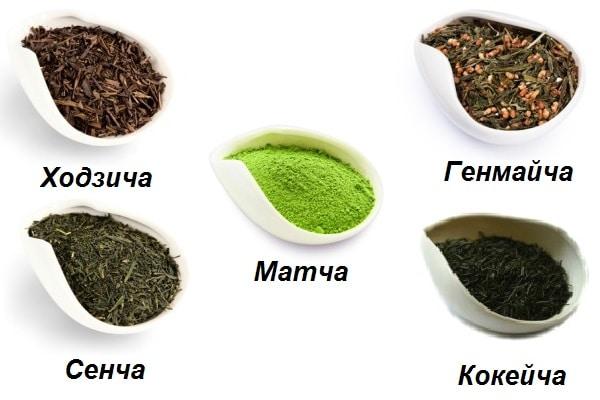 Как производят чай