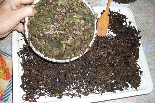 Высушивание чая после ферментации