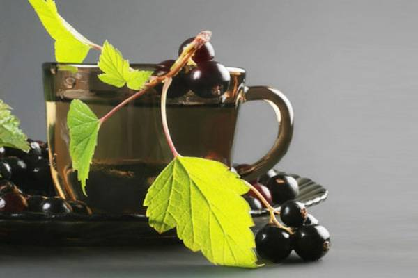 Чай фруктовый со смородиной