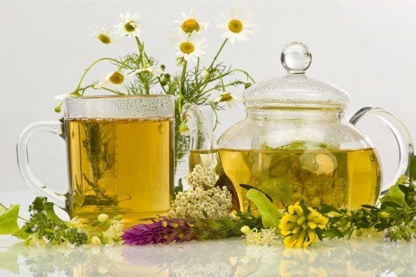 Успокаивающие травы в чай